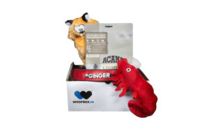 WoofBox 1 Month Subscription