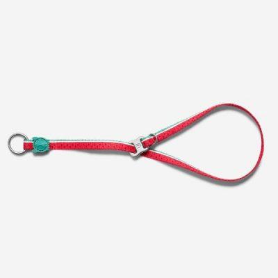 Obedience Dog Collar (Watermelon)