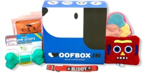 WoofBox - Best Dog Subscription Box